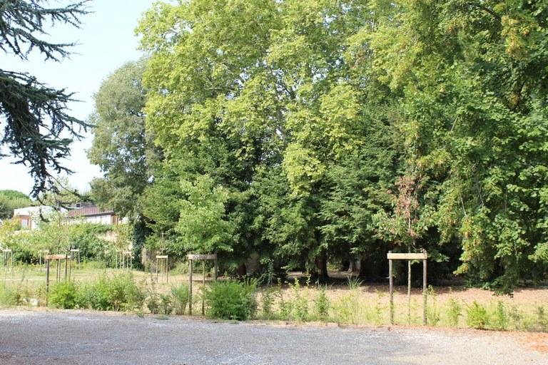 Le parc de la Maison saint Louis Beaulieu
