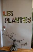 """Exposition """"Plantes, Bible, Découvertes"""""""